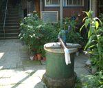 樋口一葉の井戸